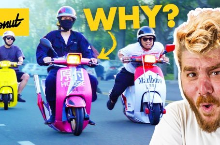 The Bizarre Japanese Scooter Gang You Never Knew Existed | Bumper 2 Bumper ❇️