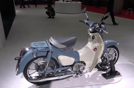 HONDA CUB 125cc new bike 2020▶️😉