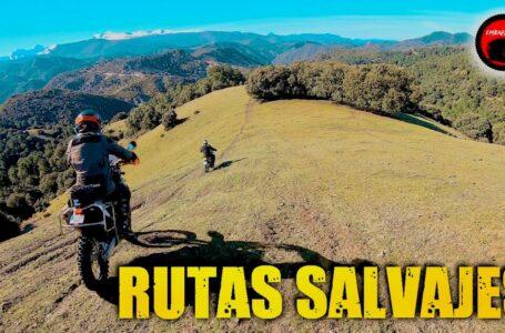 RUTAS SALVAJES en MOTO. Viaje OFFROAD por Granada con motos trail